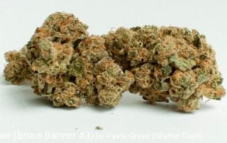 24.04% THC 3.32% Terpenes B-Banner by Prairie Grass