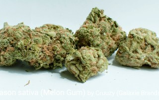 21.78% THC 1.65% Terpenes Patio Season Sativa (Melon Gum) by Cruuzy