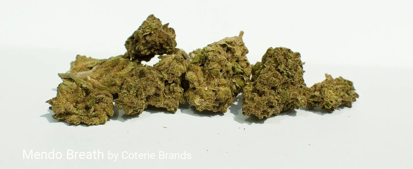 22.981% THC Mendo Breath by Coterie