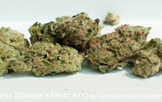 25.8% THC 2.41% Total Terpenes Secret Mintz by Dunn Cannabis