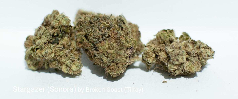 18.5% THC Stargazer (Sonora) by Broken Coast