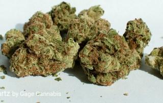 20.82% THC 4.3% Total Terpenes Sweet Tartz by Gage Cannabis