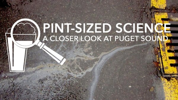 Pint-Sized Science: A closer look at Puget Sound