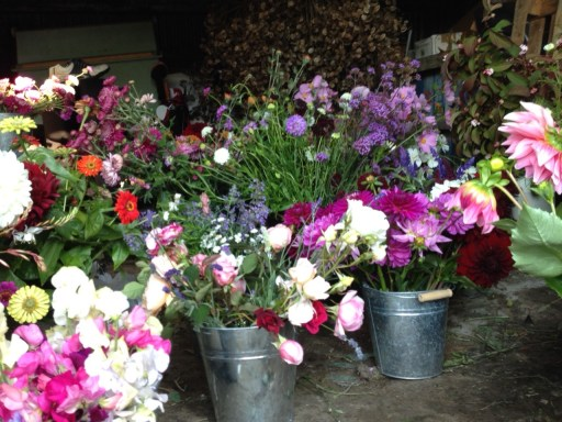 Autumn-market-flowers