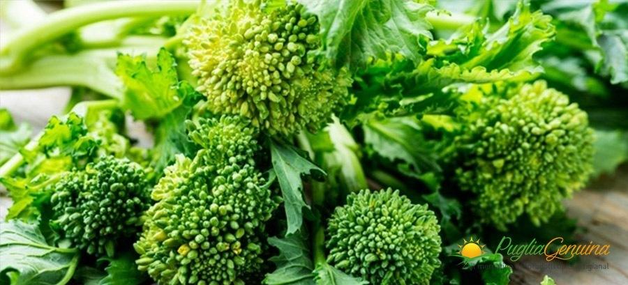 Tutto sulle cime di rapa, una verdura rigenerante dal sapore unico