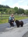 Hundeschulung Brilon Bild 4