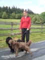 Hundeschulung Brilon Bild 6
