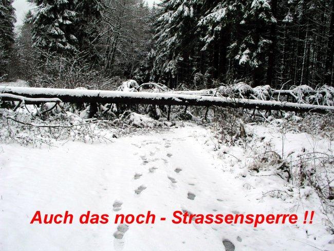 Puli Winterwanderung in Belg Strassensperre