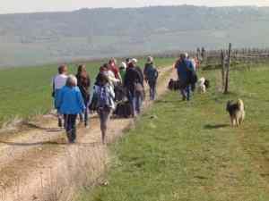 Frühlingswanderung der Landesgruppe Mitte in Gau Algesheim 16