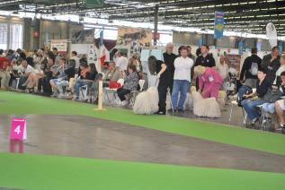 Paris Weltausstellung 2011 Impressionen