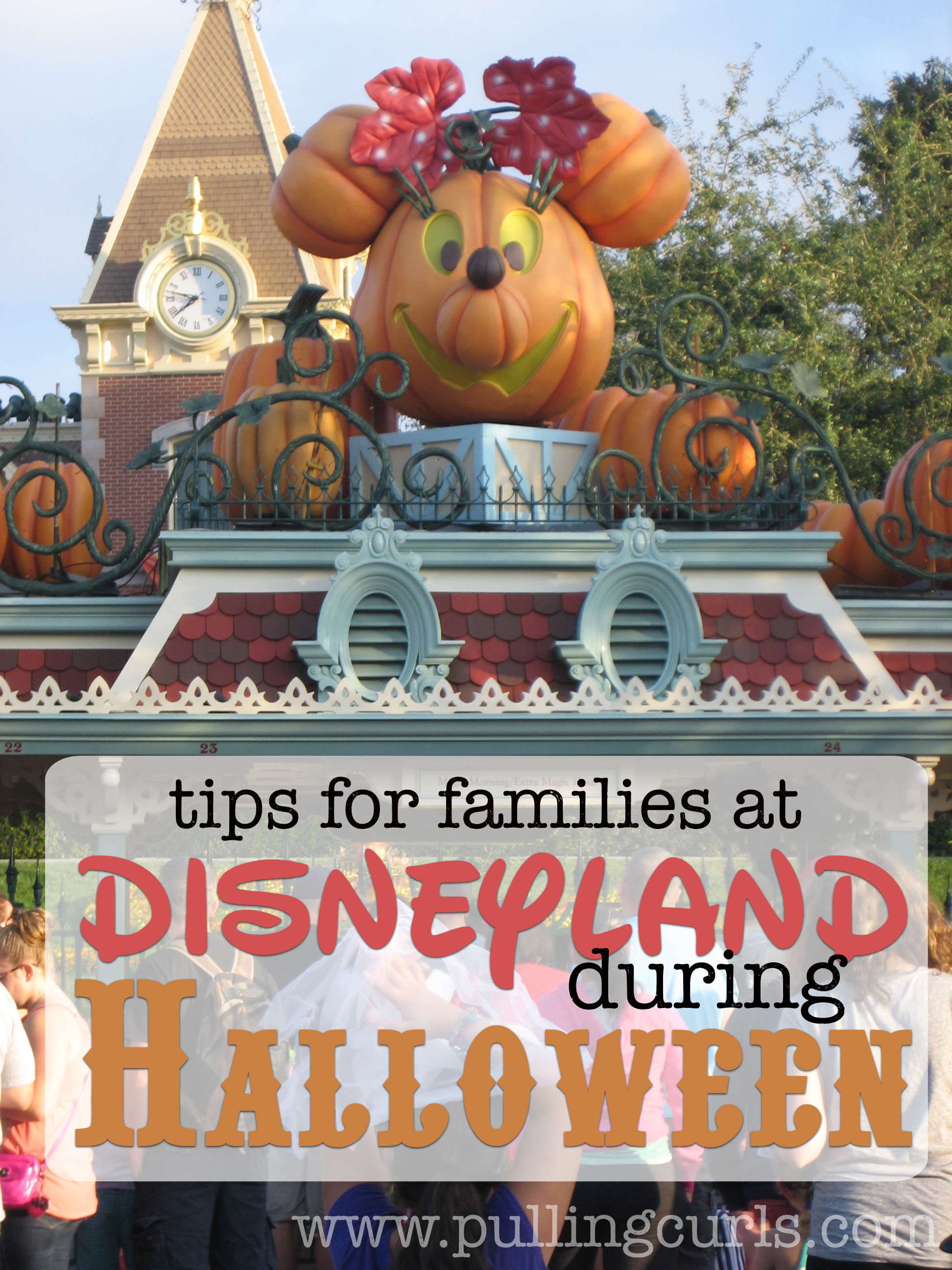 Disneyland at Halloween is a great time to visit the park. Here are 5 things to be aware of before you haunt the park with your family!
