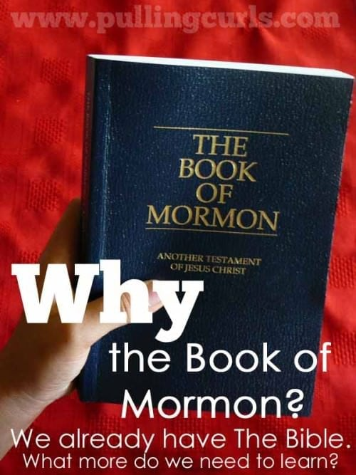 Why do we need the Book of Mormon and why would I want to read it?  I changed how I'm looking at this year, and it turns out it has a lot to teach me about a struggling family.  Give it a try!