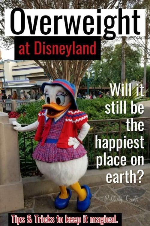 Disneyland rides for obese