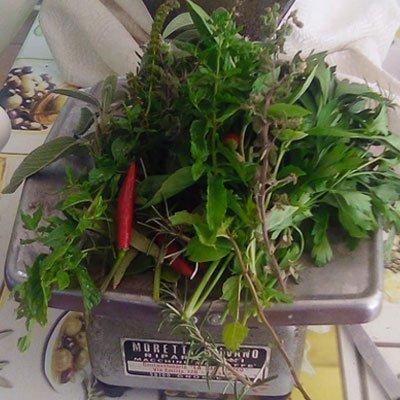 aromatiche 100g - La Ginestra - pulmino contadino