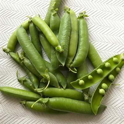 Piselli bio non certificati di Potassa - pulmino contadino