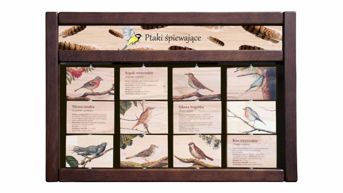 ZIDM-15 - Tablica interaktywna - Ptaki spiewajace