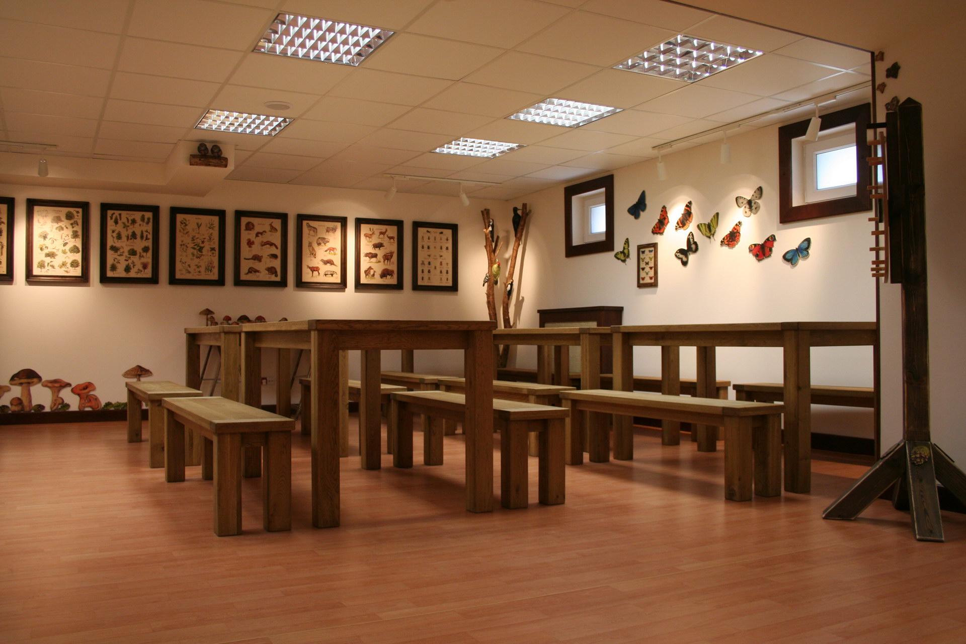 Izby edukacyjne lesne - sale przyrodnicze, wystroj wnetrz - Nadlesnictwo Cybinka (5)