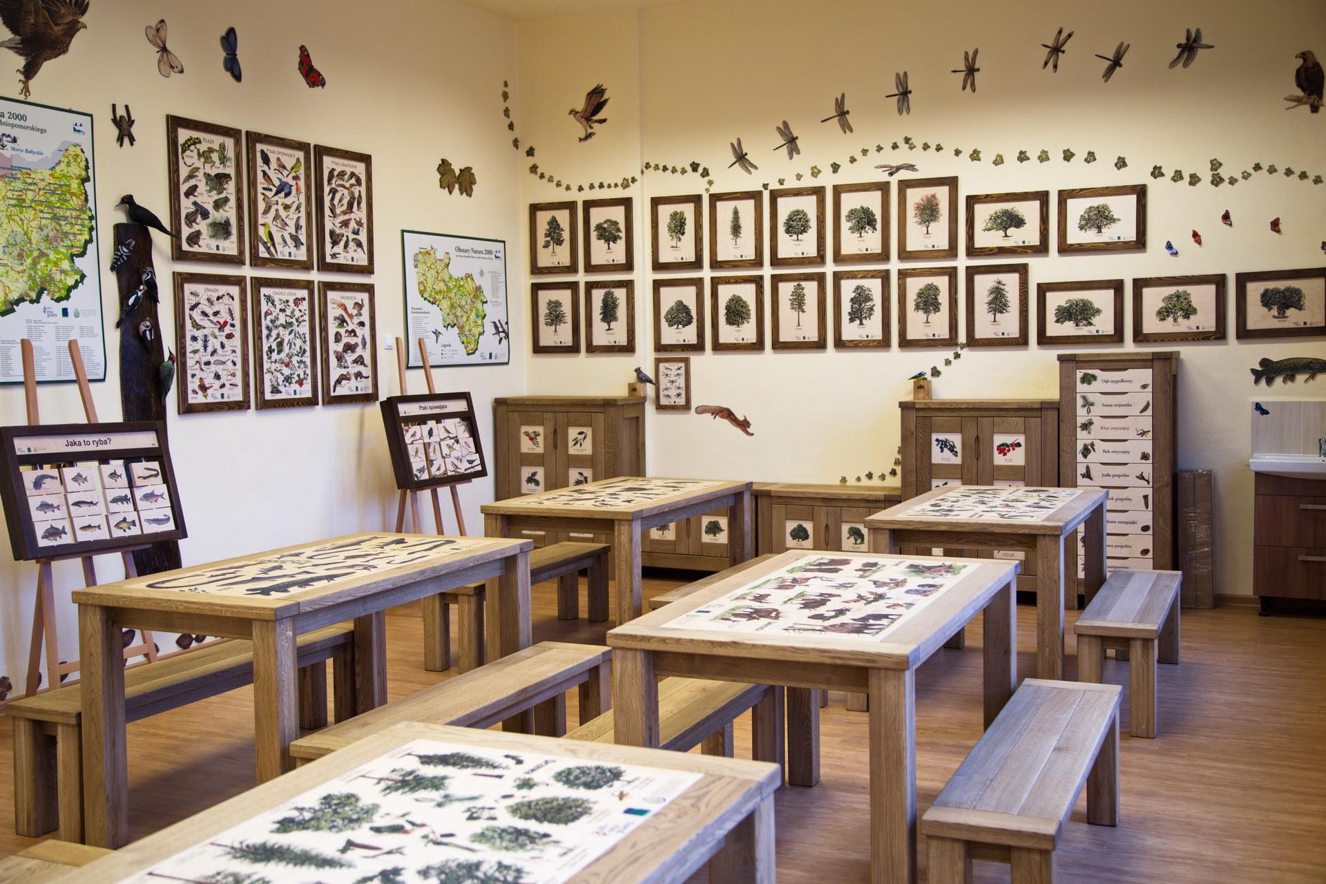Izby edukacyjne lesne - sale przyrodnicze, wystroj wnetrz - PSP nr 1 w Polczynie Zdroju (3)