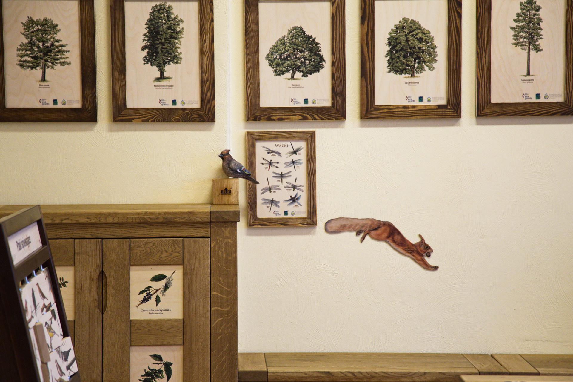 Izby edukacyjne lesne - sale przyrodnicze, wystroj wnetrz - PSP nr 1 w Polczynie Zdroju (5)