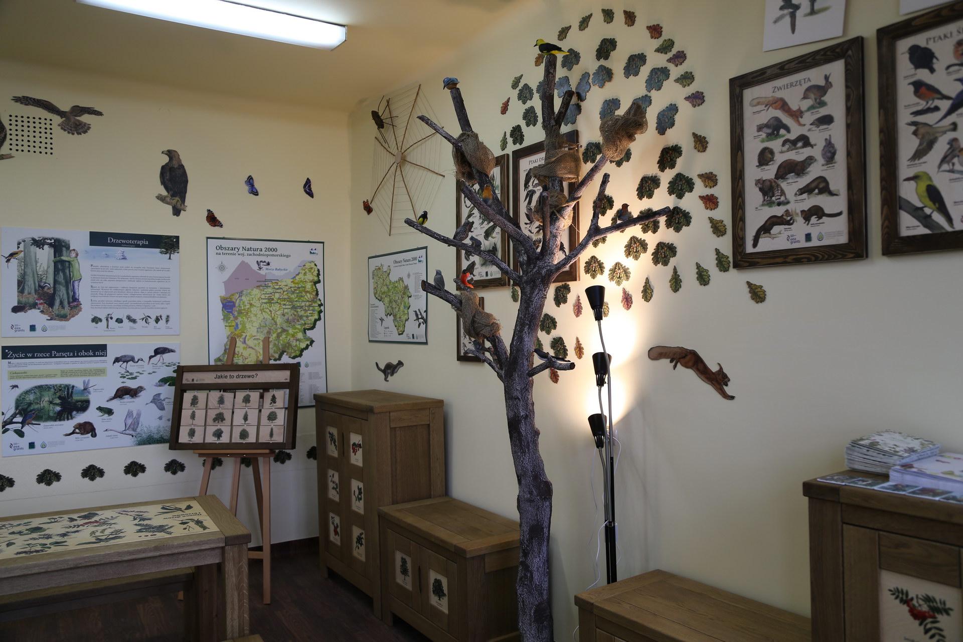 Izby edukacyjne lesne - sale przyrodnicze, wystroj wnetrz - SP w Barwicach (4)