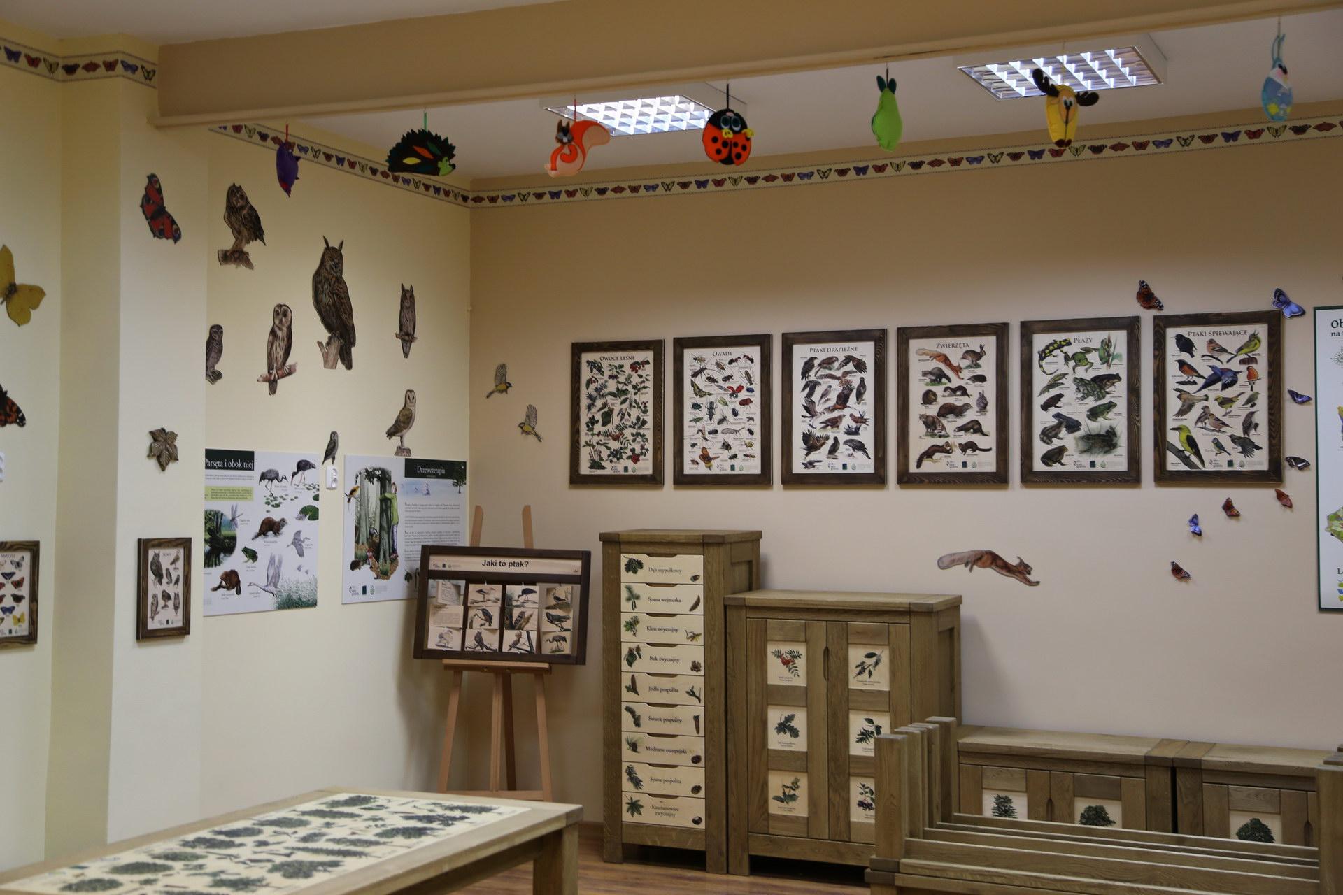 Izby edukacyjne lesne - sale przyrodnicze, wystroj wnetrz - SP w Biesiekierzu (3)