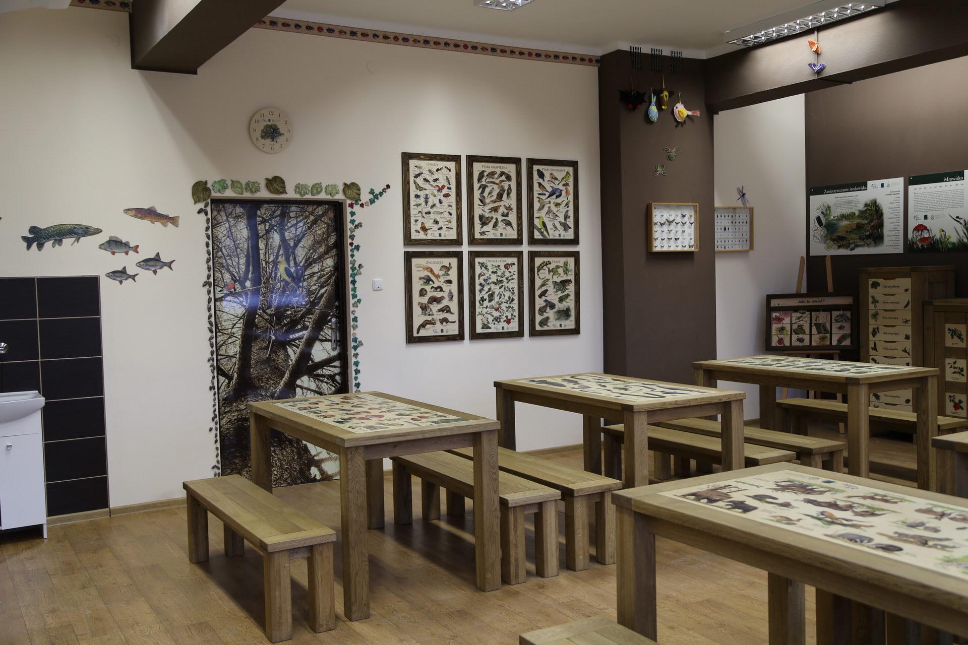 Izby edukacyjne lesne - sale przyrodnicze, wystroj wnetrz - SP w Wierzchowie (3)