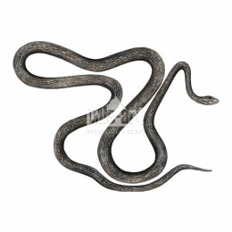 Wąż eskulapa (Zamenis longissimus - Elaphe longissima)