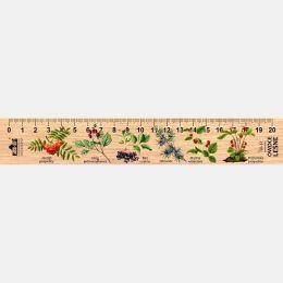 LESs-68 - Owoce lesne (linijka drewniana)