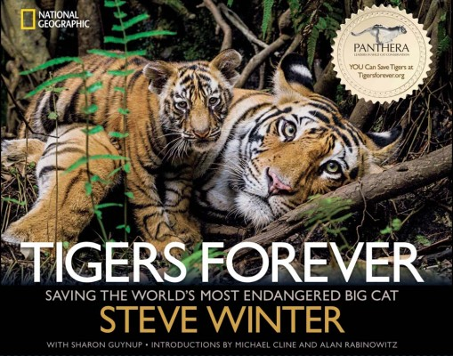 Tigers Forever Book Cover