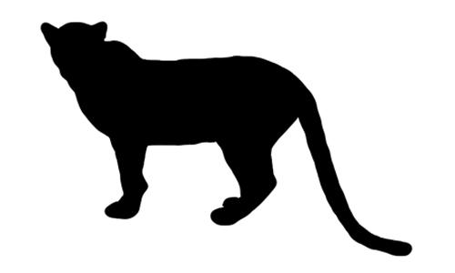 Arabian Leopard Silhouette