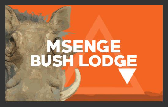 Pumba weddings elements msenge