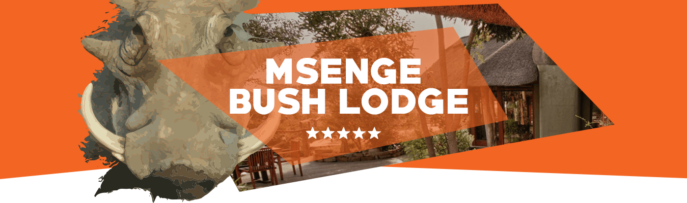 Msenge Bush Lodge header