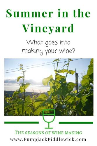 Tucking in your vineyard with Pumpjack Piddlewick
