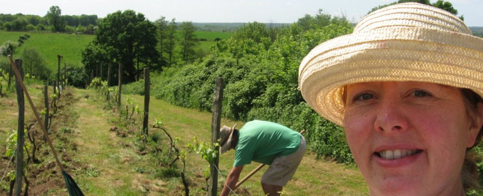 Who We Are Pumpjack Piddlewick in our vineyard near Chablis France