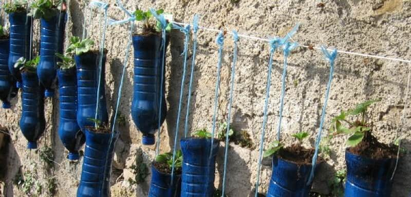 How to make a vertical garden out of recycled plastic bottles with ...