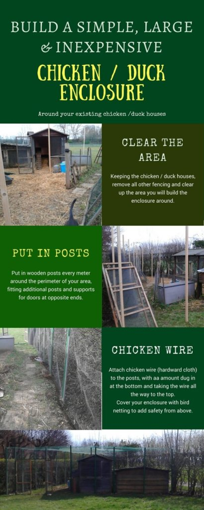 How to build a simple large and inexpensive chicken and duck enclosure around your existing houses at PumpjackPiddlewick