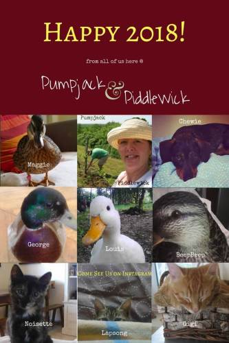 Happy New Year 2018 from all of us at Pumpack and Piddlewick - Reflections and Resolutions