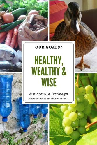 Our Goals Healthy Wealthy Wise and a pair of donkeys at PumpjackPiddlewick