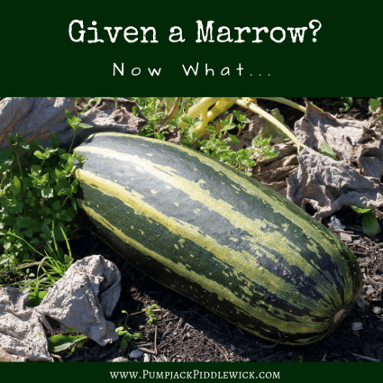 What to do with a marrow at PumpjackPiddlewick