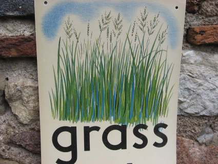 Grass pronunciation poster at PumpjackPiddlewick