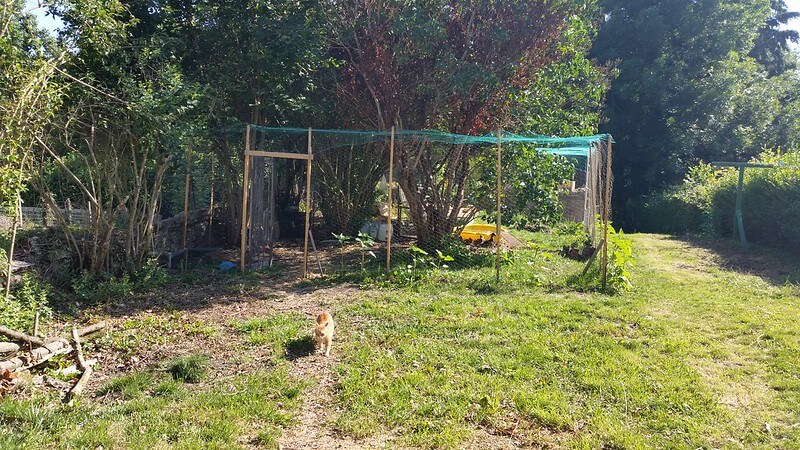 Developing the Duck Enclosure at PumpjackPiddlewick