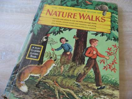 vintage nature walks book