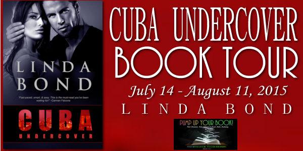 Cuba Undercover Book Banner