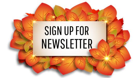 teaser fall newsletter 2