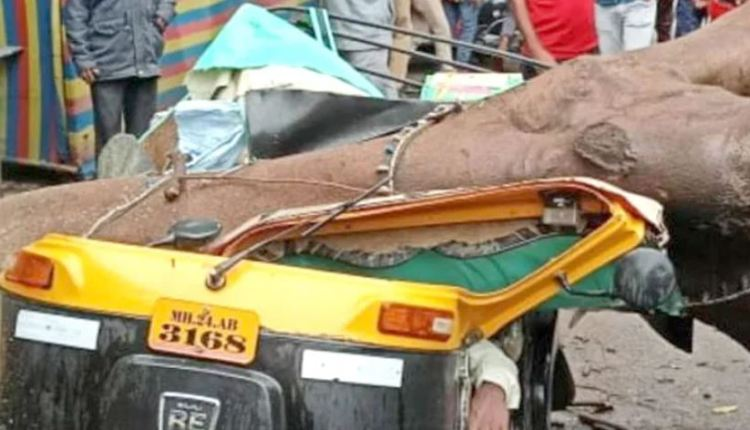 latur-news-tree-rickshaw-collapsed-and-shattered-driver-was-killed-and-one-was-injured