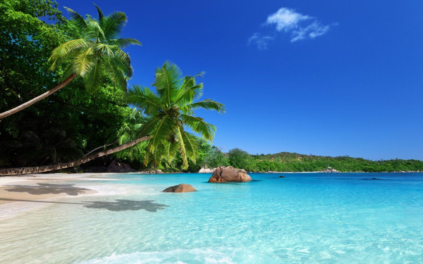Hawaiian Finds Real Paradise In Panama Punta Pacifica