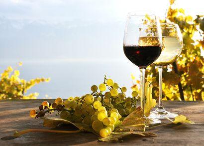 vini naturali e biologici
