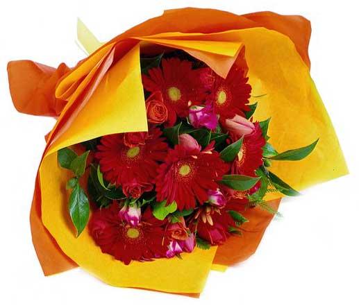 Bouquet con gerbere rosse in confezione gialla