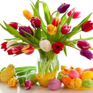 mazzo con tulipani colorati
