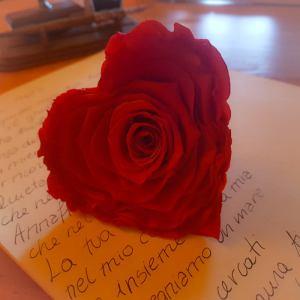 Consegna a domicilio bocciolo rosa rossa e poesia d'Amore